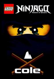 LEGO Ninjago - Lego ninjago | Cole masters of spinjitzu ,  G. Farshteya  Serie: LEGO NINJAGO