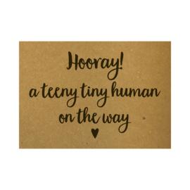 Hooray! A teeny tiny human on the way, per 10 stuks