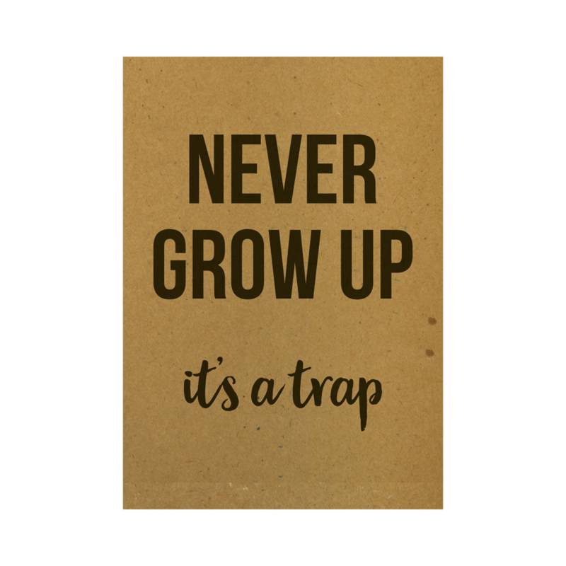 Never grow up it's a trap, per 5 stuks