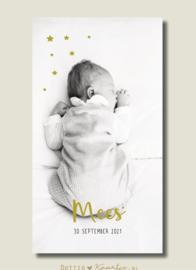 Geboortekaartje Mees