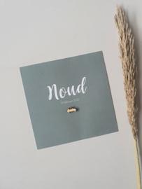 Geboortekaartje Noud