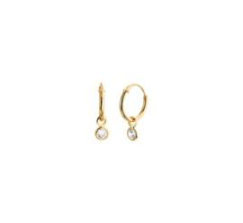 Earrings Zirkonia Gold