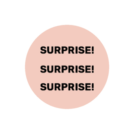 SURPRISE SURPRISE SURPRISE | sticker