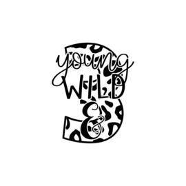 young, wild & 3 | strijkapplicatie