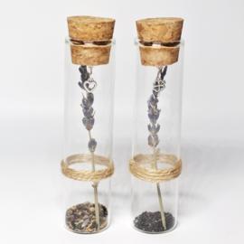 Glazen buisje met zaadjes en groeikaart