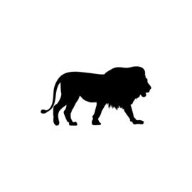 Leeuw - jungledieren
