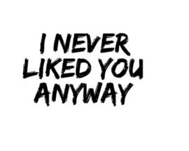 I never liked you anyway strijkapplicatie