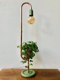 Lamp en Plant