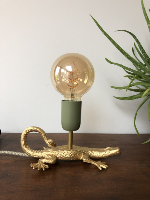 Krokodillampje
