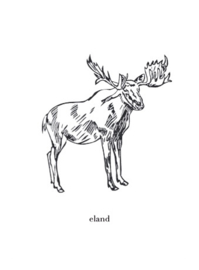 Wenskaart graspapier Eland