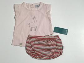 Kidscase kort broekje voor jongen of meisje van 1 maand met maat 56