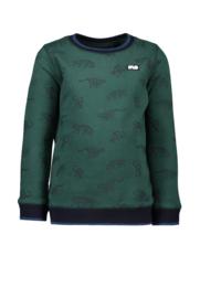 FLo boys sweater animal-green