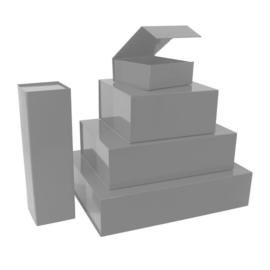 Magneetdoos glans zilver