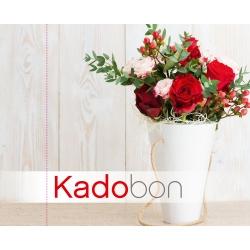 Kadobon 1701