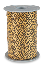 safari zebra bruin
