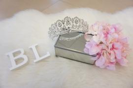 Arabella Silver