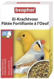 Vogelvoeding