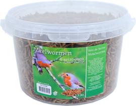 Meelwormen 2,5 ltr.