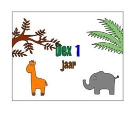 Bellenblaas: Dex 1 jaar (Jungle thema)