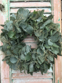 Eucalyptus krans met tillandsia