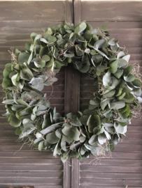 Eucalyptuskrans met tillandsia 50cm