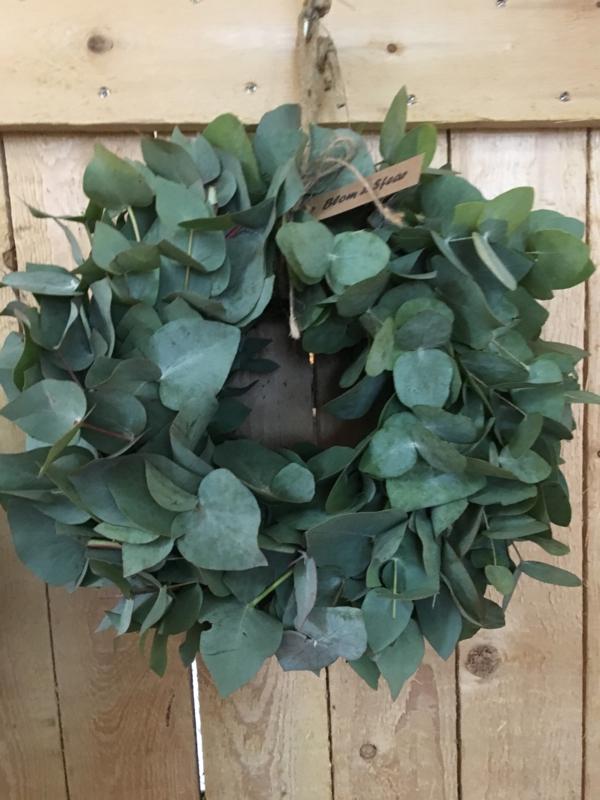 Eucalyptus krans