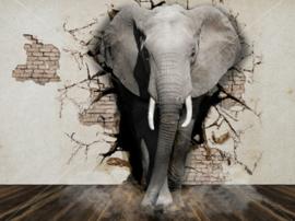 D134 diamond painting olifant uit muur  Ronde steentjes 40 x 50