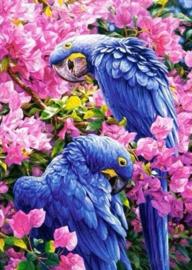 01 Papegaaien blue vierkante steentjes 30 x 40
