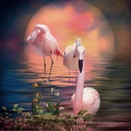 DP Flamingo's 51527 ronde steentjes, 40 x 50 cm