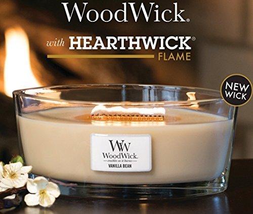 woodwick ellipse.jpg