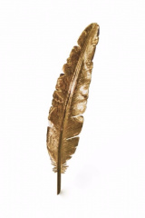Pics & blocks Stylehunter feather gold