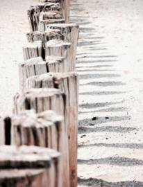 Pics & blocks sea