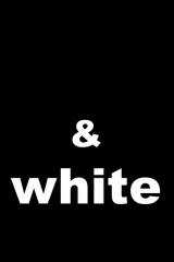 Pics & blocks & white