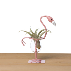 Flamingo curved neck + airplant