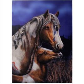 Canvas 50x70cm  - Apache - Lisa Parker