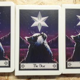 Notitieboek - Deadly Tarot Felis The Star - A5