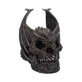Spiral - Draco Skull - 19cm