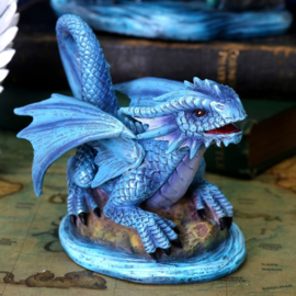 Anne Stokes - Baby Water Dragon - 11,5cm