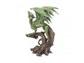 Anne Stokes beeld - Adult Forest Dragon - 25,5cm