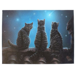 Canvas - Wish Upon a Star - Lisa Parker
