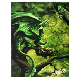 Canvas - Forest Dragon - Anne Stokes