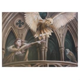 Canvas 50x70cm  - Owl Messenger - Anne Stokes
