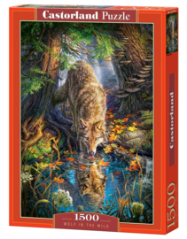 Puzzel - Wolf in the Wild - Castorland