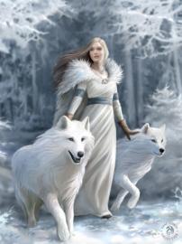 Anne Stokes - Winter Guardians - 30 x 40cm 3Dprint
