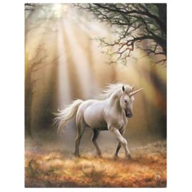 Canvas - Glimpse Unicorn - Anne Stokes