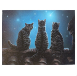 Canvas 50x70cm  - Wish upon a star - Lisa Parker