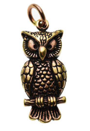 Owl On Perch - hanger - Brons