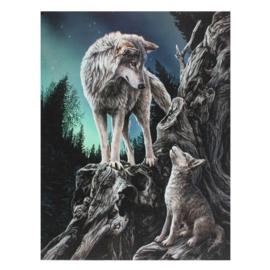 Canvas - Guidance - Lisa Parker
