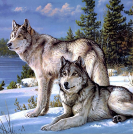 Diamond painting - Wolves
