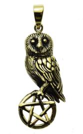 Owl On Pentagram - Bronzen hanger - Lisa Parker